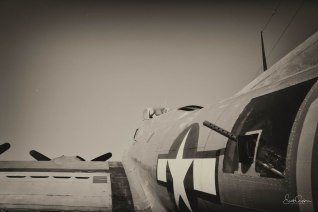 B17_Dallas_18_side